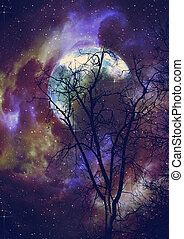 Leafless tree branches over starry sky - Black leafless tree...