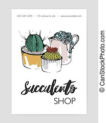 Leaflet template with several different succulents growing in pots and creamer hand drawn on white background and place for text. Potted desert plants, natural home decorations. Vector illustration.