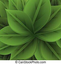 leafs, задний план