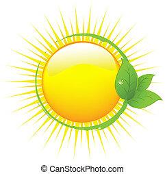 leafs, 太陽