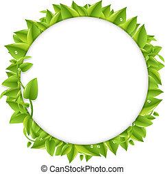 leafs, círculo, verde
