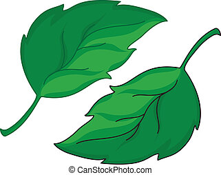 leafs - illustration of a green leafs