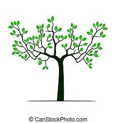 leafs., grön, vektor, träd, illustration.