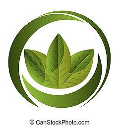 leafs healthy food icon