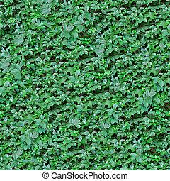 leafs, seamless, バックグラウンド。