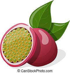 leafs., vektor, passion, illustration, frukter