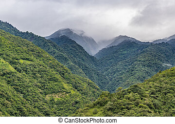 Beautiful landscape scene of big leafy mountains located in Banos, Ecuador.