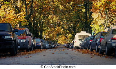 Leafy Suburban Road In The Fall - Rows of parked cars on a...
