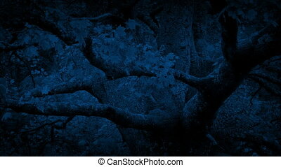 Leafy Tree Branches In Breeze At Night - Large tree with...