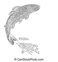 Leaping trout salmonidae as vintage engraved vector...