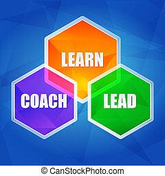 learn, coach, lead in hexagons, flat design