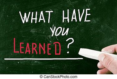 learned?, 何か, あなた, 持ちなさい