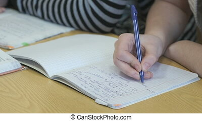 Learner writes text in a exercise book using a pen - Learner...