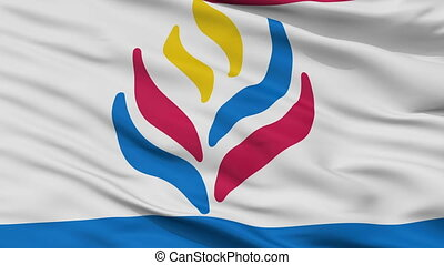 Learning And Lib Flag Closeup Seamless Loop - Learning And...