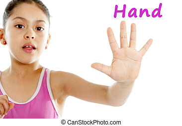 close up of a young girls hand and fingers on a white background for a body chart guide or human anatomy