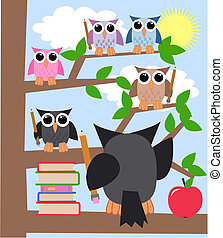 learning owls