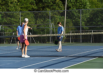 Learning Rules to Pickle Ball