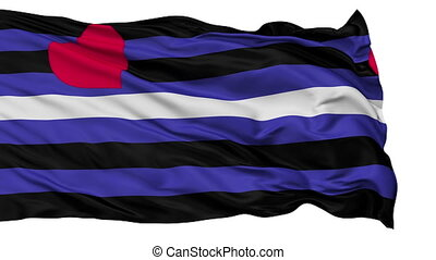 Leather Latex and BDSM Pride Light Close Up Waving Flag -...