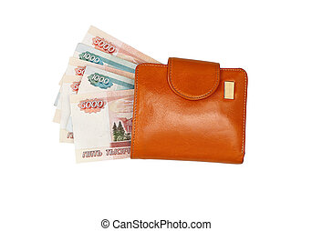 Leather wallet with money isolated on white background.