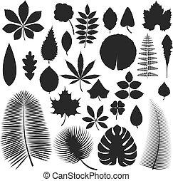 Leave icon vector illustration.