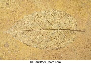 leave stucco on sandstone floor