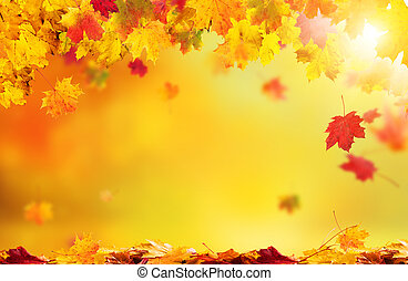 leaves, задний план, falling, осень, абстрактные