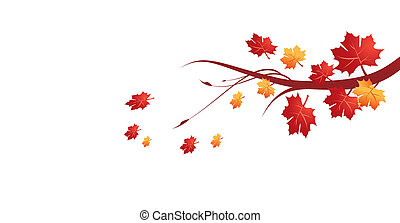 leaves, иллюстрация, осень, вектор