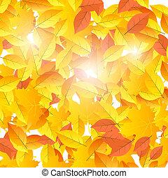 leaves., amarela, outono, tema, fundo, laranja, queda