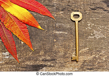 Leaves and key