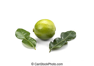 Leaves and lime fruit