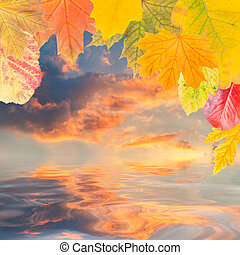 Leaves and majestic clouds - Autumn background with leaves...