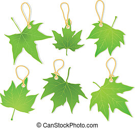 leaves as labels