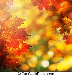 leaves., automne, fond, automne, frontière, érable