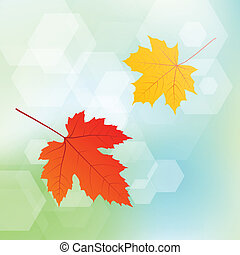Leaves autumn vector background concept