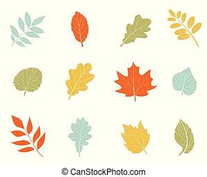 leaves., beau, coloré, automne, collection