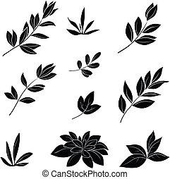 Leaves, black silhouettes - Leaves of various plants, set...