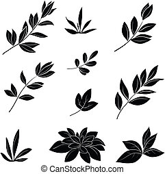 Leaves, black silhouettes - Leaves of various plants, set...
