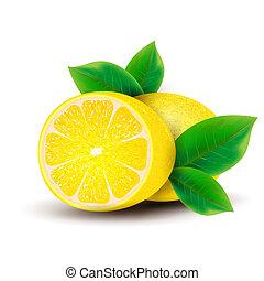 leaves., citroenen
