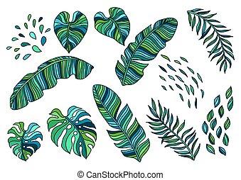 leaves., ensemble, paume