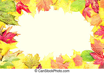 Leaves fall frame