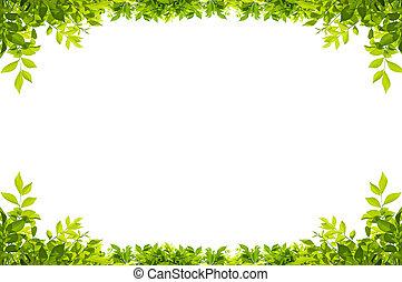 Leaves frame isolated - leaves frame isolated on white...