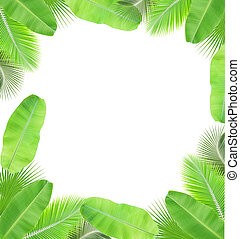 Leaves frame isolated