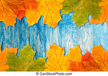 Leaves frame with blue wooden background