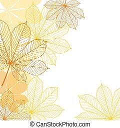 leaves., fundo, outono, queda