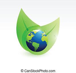 leaves globes illustration design