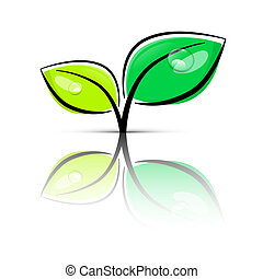 Leaves Green Vector Illustration Isolated on White Background