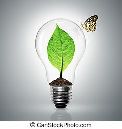 Leaves grow in a light bulb have butterfly on gray background