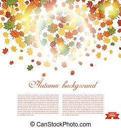leaves., ilustração, outono, verde, fundo amarelo, queda, vermelho, maple, sunlight.