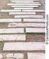 Leaves imprint on the sandstone block