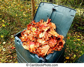 Leaves in compost bin